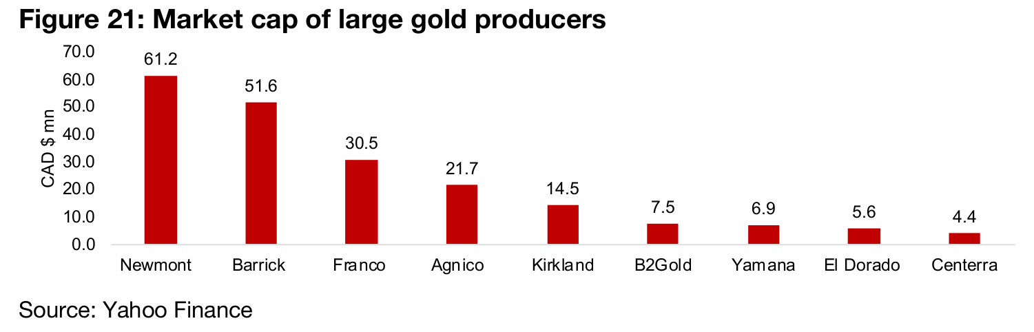 Gold producers have a strong year on continued rise in gold price